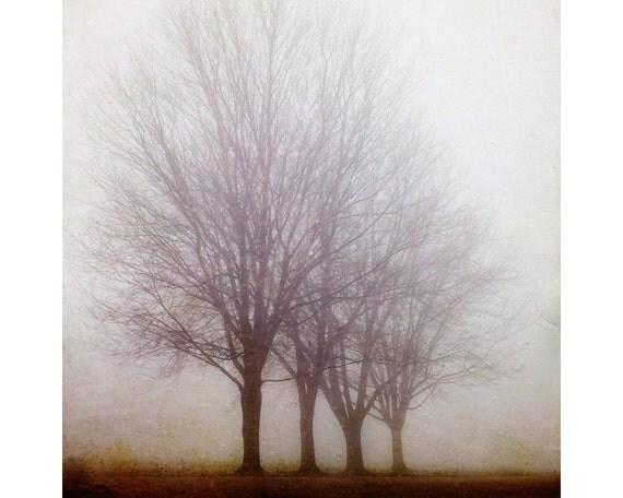 "Landscape Photography, Tree Photography, Winter Print, Fog, Purple Art Print, Nature, Rustic Decor, 8x8, 16x16, ""Standing Still"""