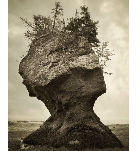 """Surreal Landscape Photography, Sepia Nature Photography, Rock Formation, Coastal Decor, Ocean Art, Brown Wall Decor, """"The Face of Nature"""""""