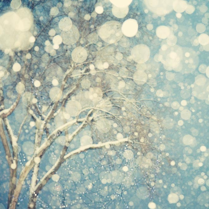 winter landscape photography abstract tree wall art print