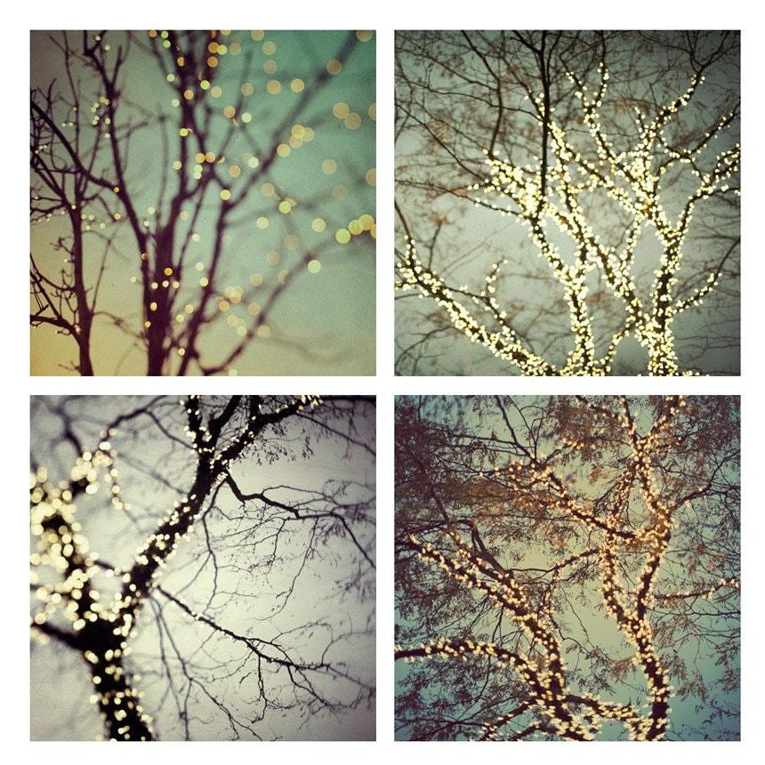 sale tree prints winter prints fine art photography winter. Black Bedroom Furniture Sets. Home Design Ideas