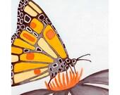 Mod Monarch