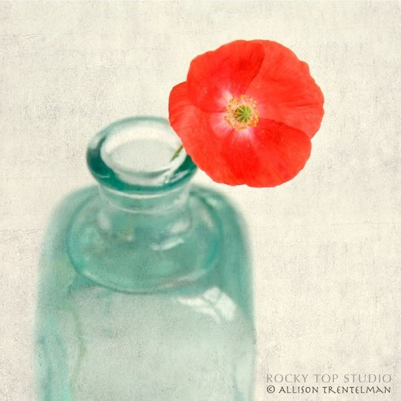 SALE - 60% off - Shirley Poppy - fine art flower photography print
