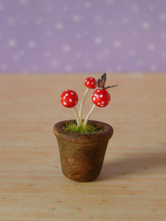 Muffa's - Miniature Pot of Toadstools Fairy Mushrooms