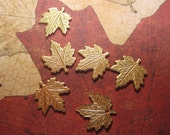 Maple Leaf Brass Jewelry Charms/Crazy Quilt/Collage Can on Etsy x 6