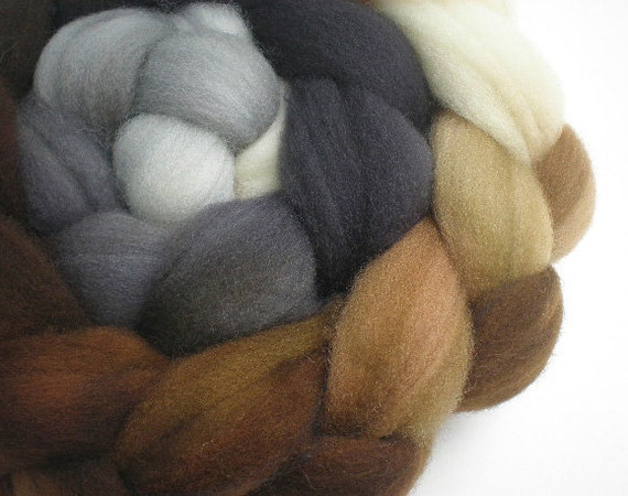 RESERVED for debponzio hand dyed superwash wool top spinning fiber gradient progression LITHOS 4 oz.