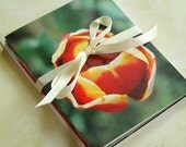 Floral Beauty, Set of 4  Greeting Cards