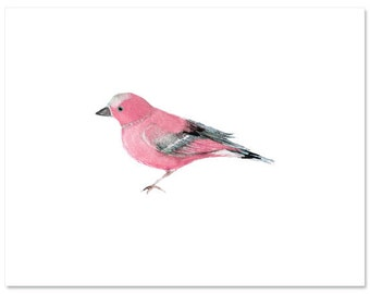 "Fine Art, Watercolor, Bird in Pink-8""X10"" Print by Laura Gunn"