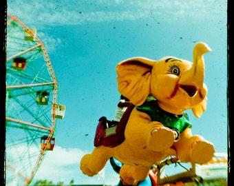 Dumbo - Coney Island - Brooklyn, New York (8x8)