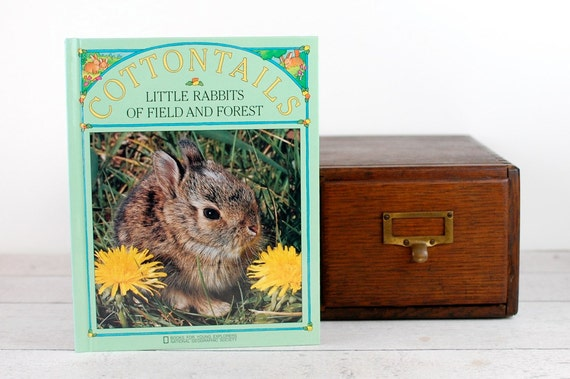 iPad Cover- Cottontails- device case custom made from recycled book - custom made tablet cover