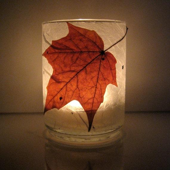 Real Autumn Maple Leaf Earth Light