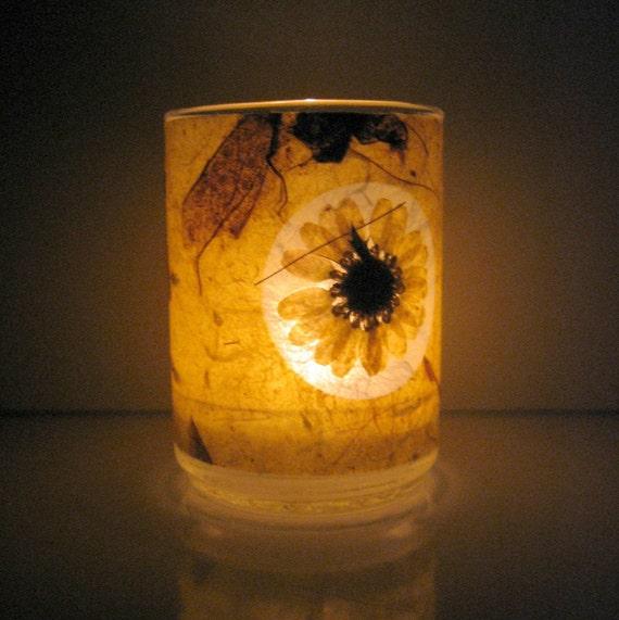 Yellow Daisy Earth Light
