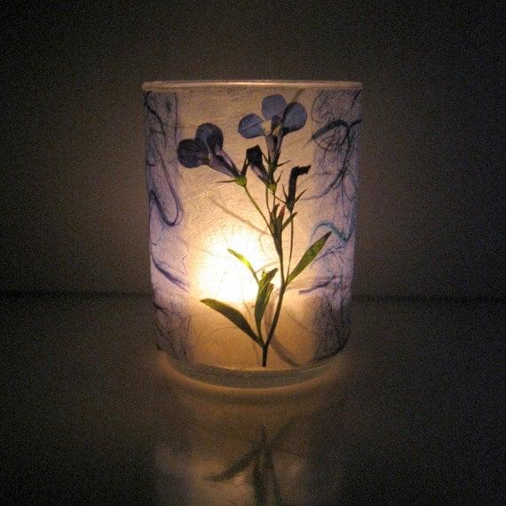 Blue Lobelia Earth Light