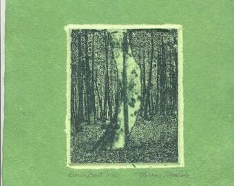 GREEN BENT TREE etching on handmade paper