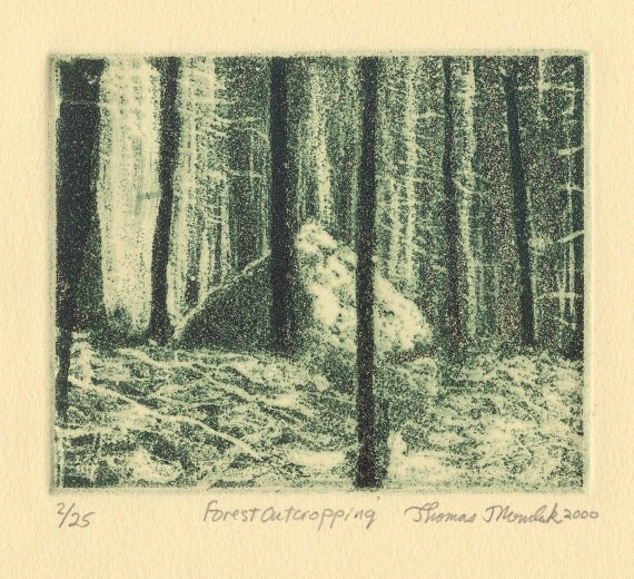 FOREST OUTCROPPING original hand printed copper plate aquatint etching