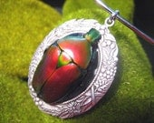 Red Flower Beetle on Silver Pendant Necklace