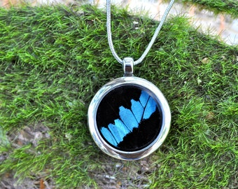 Real Butterfly Wing Pendant Necklace Reversible
