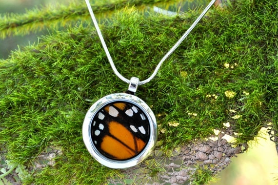 Real Monarch Butterfly Wing Pendant Necklace Reversible