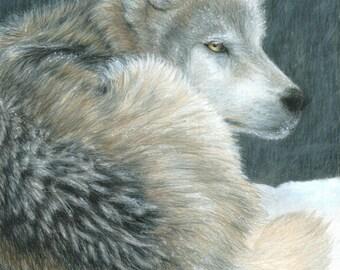 Wolf Art COLD EVENING print by Carla Kurt Signed 11 x 14