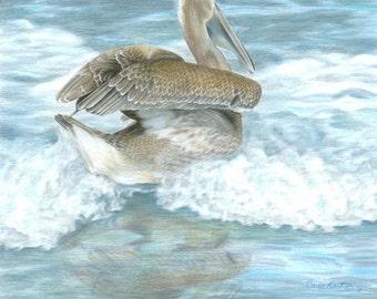 Bird Art PELICAN SURF Original Artwork by Carla Kurt