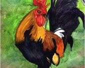 6 Watercolor print notecards -chicken, rooster