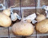 Primitive Fall Gourd Garland  with Homespun