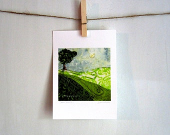 Green Patch II, green grass,  5 x 7 archival print