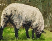 Grazing Sheep at Broken Barn - Print of Original Art by HARRY