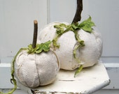 Ghost White Pumpkins Fall Autumn Halloween set of 2