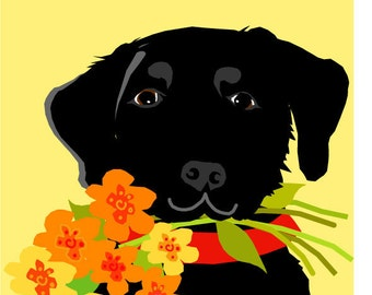 greeting card collection black labs