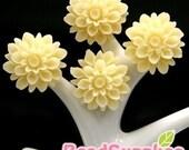 CA-CA-01563- Cream chrysanthemum Cabochon, 6 pcs