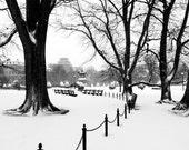Public Garden Snow- 8x10 Print- Boston downtown winter landscape photography