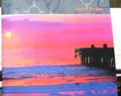 Into the Electric Sunset Poetry Chapbook
