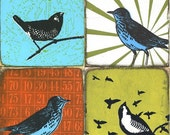 four explorer birds - colorful compilation - limited edition PRINT- series 6