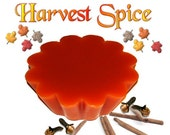 4 Harvest Spice Wax Tarts Candle Melts Fall Spicy Scent