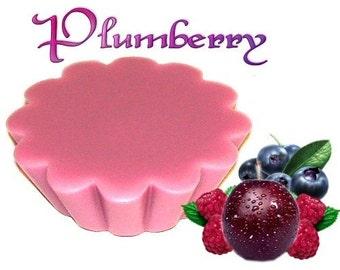 4 Plumberry Tarts Candle Melts Tangy Berry Scent