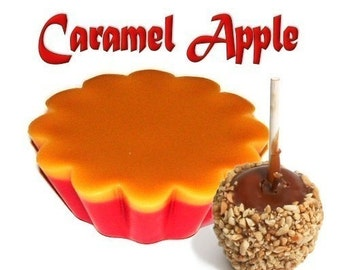 4 Caramel Apple Tarts Wickless Candle Melts Fall Scent