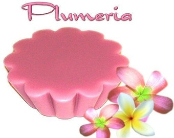4 Plumeria Tart Potpourri Wickless Candle Melts Fruit and Floral Scent