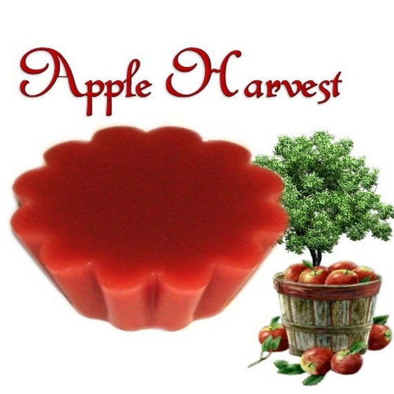 4 Apple Harvest Tarts Candle Melts Fruit and Spice Scent