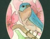 Bluebird, original, watercolor ink painting, ChristyLDesigns, handmade