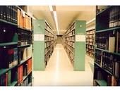 Public Library II