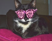 Valentine's Day Shutter Shades for Cats/ Valentine's Kitty Glasses in pink