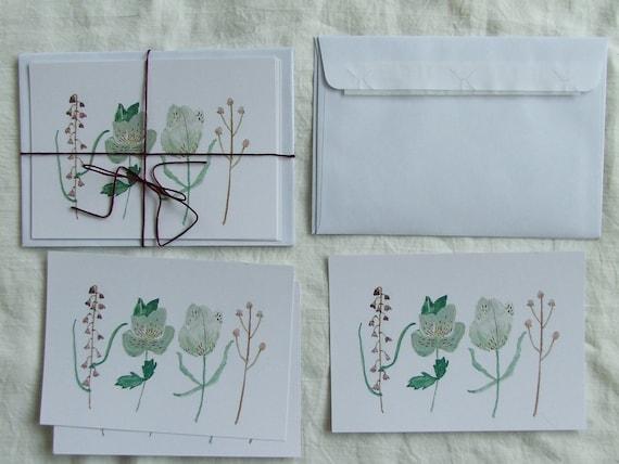 watercolour card set- hellebore