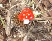Alice's Mushroom Ring