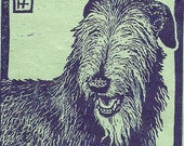 Scottish Deerhound Linocut