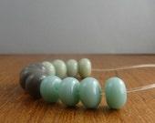 lichen, grey, egg blue