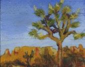 Desert Landsape