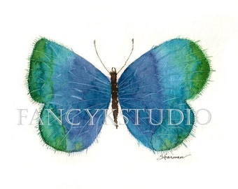 689 BUTTERFLY 5x7 Limited Edition Art Print