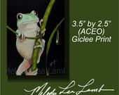 Whites Tree Frog Miniature Art by Melody Lea Lamb ACEO Giclee Print