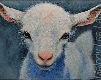Barnyard Animal Goat Art by Melody Lea Lamb ACEO Print #276