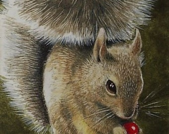 Squirrel and Berry  Miniature Art by Melody Lea Lamb ACEO Print